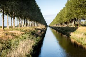 Langs het Leopoldkanaal en het afleidingskanaal (de blinker en de stinker) is het heerlijk fietsen of wandelen.